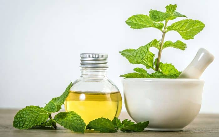 14 Tips for Use of Peppermint Essential Oil