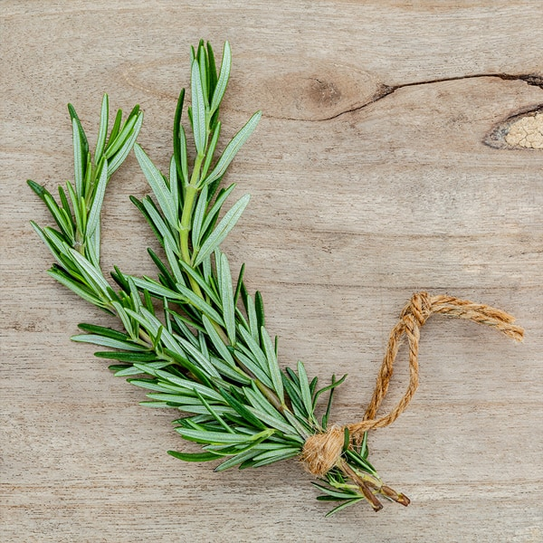 The Top 8 Beneficial Effects of Rosemary Essential Oil