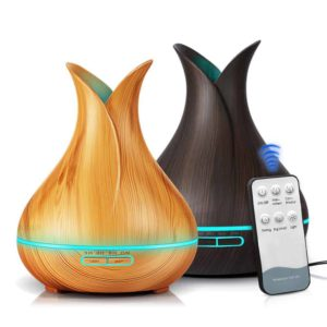Ultrasonic Essential Oil Diffuser with Remote Control